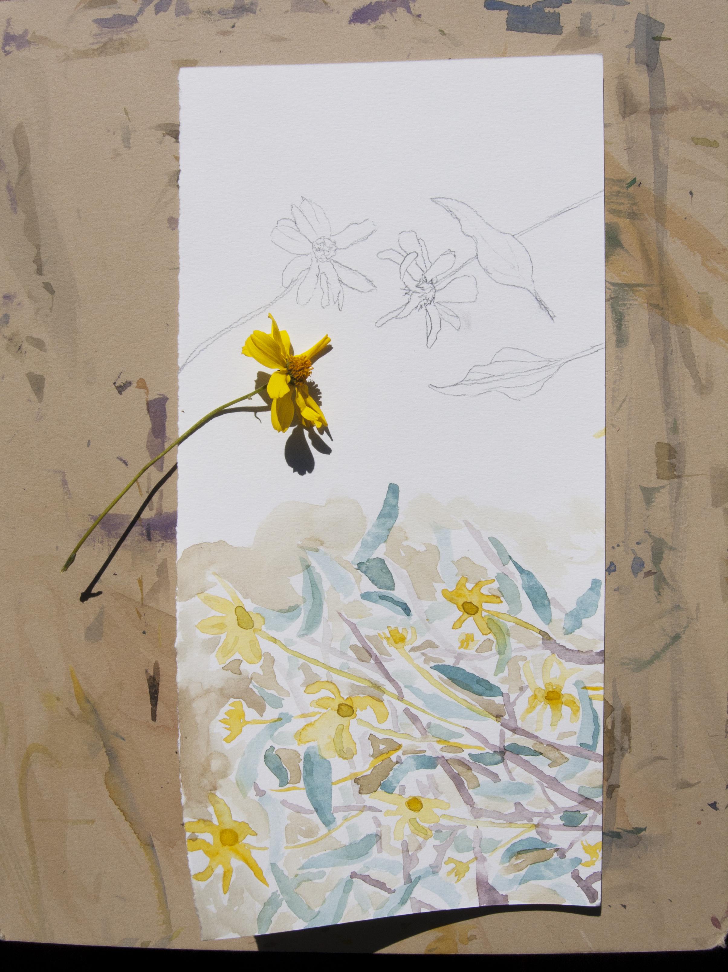 Richard Schaffer watercolor