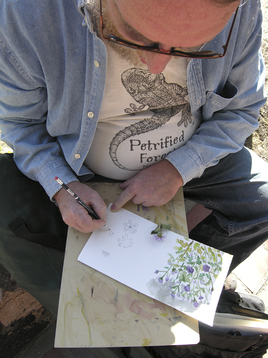 Richard Schaffer painting, Desert Lab patio