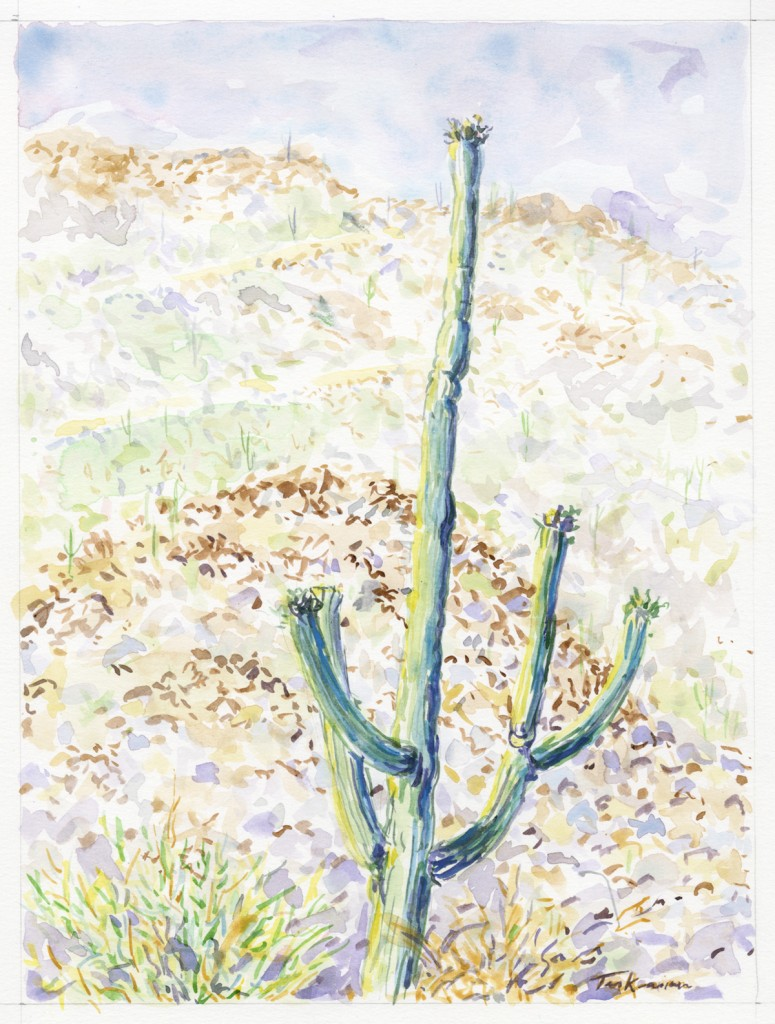 Plein air watercolor painting by Barb Terkanian