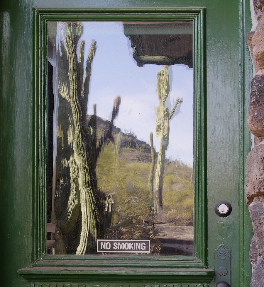 Old Desert Lab door and window reflect the hill.