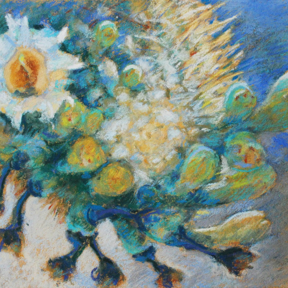 Saguaro flower stages, pastel by Meredith Milstead.