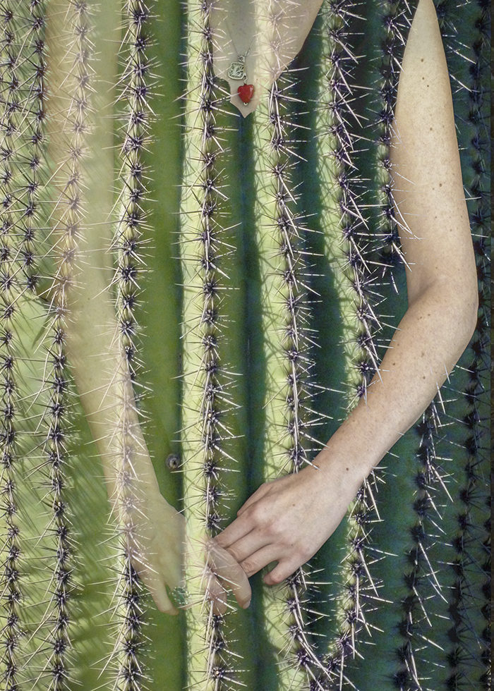 saguaro-arms photo by paul mirocha