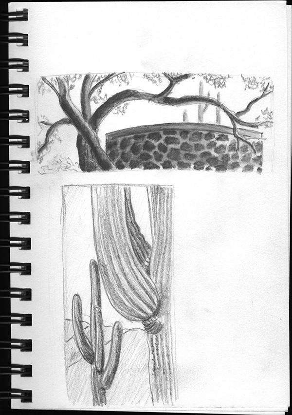 Sketchbook art by Linda Tabor