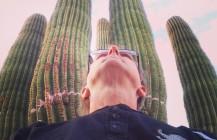 I Stand with Saguaros