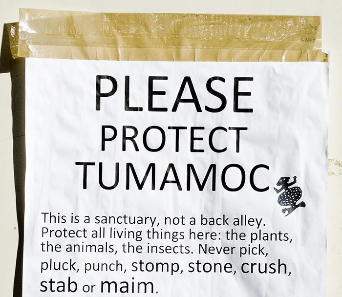 protect-tumamoc_fi