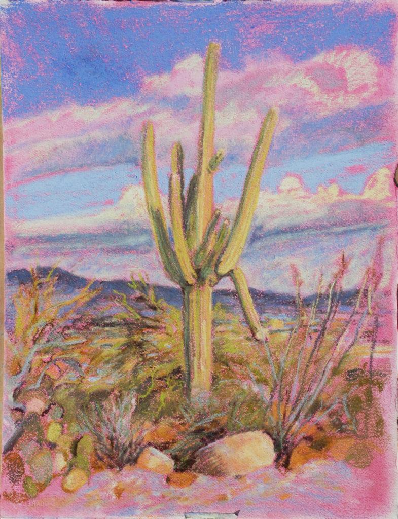 Saguaro SGP5by Meredith Milstead