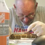 Snake Doctor Matt Goode performing snake surgery