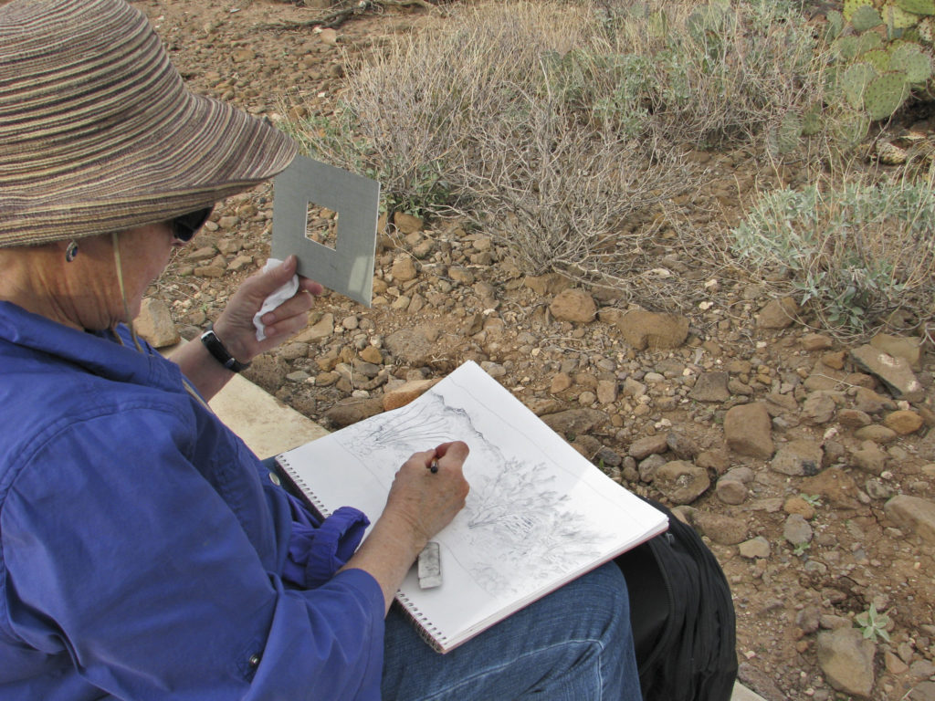 Margaret Davis uses a Viewfinder as a landscape drawing aid. (photo by Meredith Milstead)