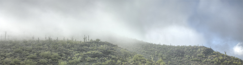 fog on teh hill