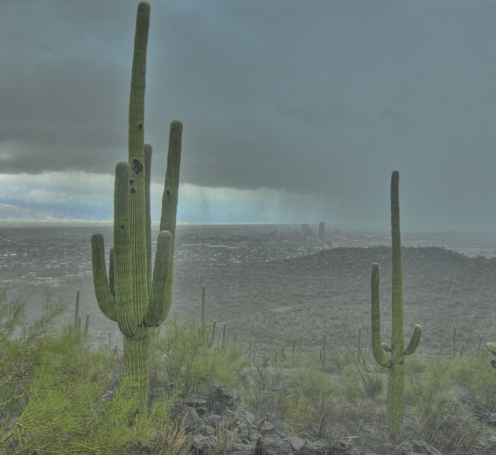 monsoon rain over downtown Tucson from Tumamoc Hill