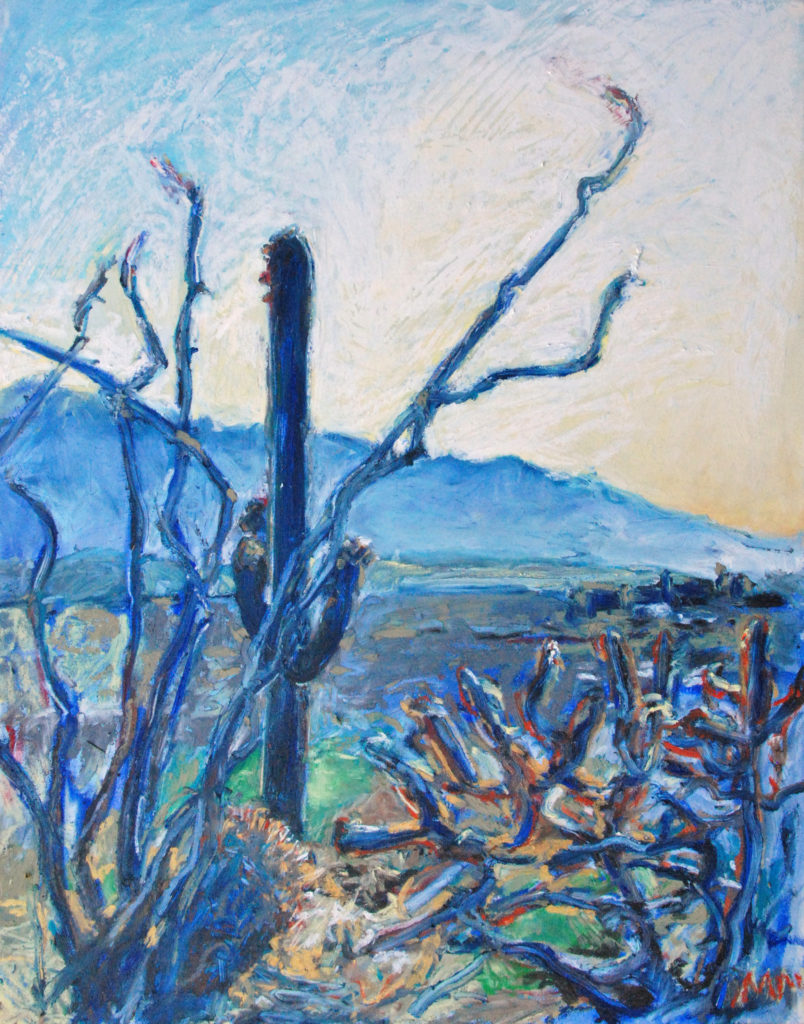 A view of the Catalinas from Tumamoc Hill, pastel by Meredith Milstead.