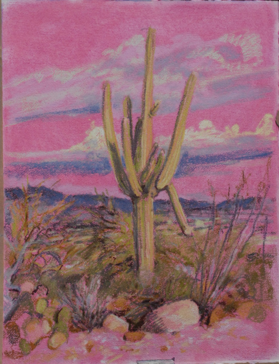 plein air saguaro pastel painting by meredith milstead