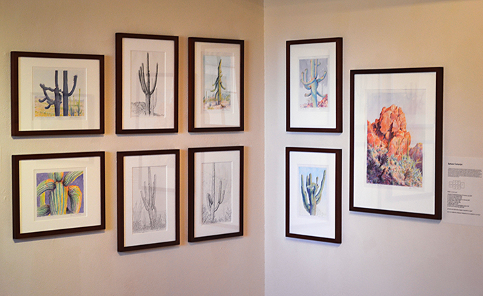 Tumamoc artists show at Tohono Chul gallery