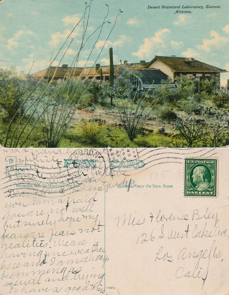 Old post card of the desert laboratory on Tumamoc