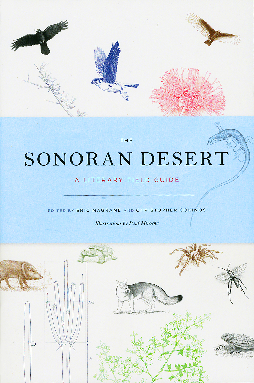 The Sonoran Desert- A literary Field Guide