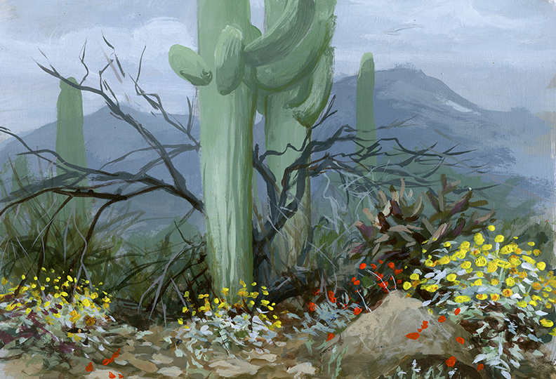 Desert rain storm on Tumamoc Hill, painting by Bill Singleton