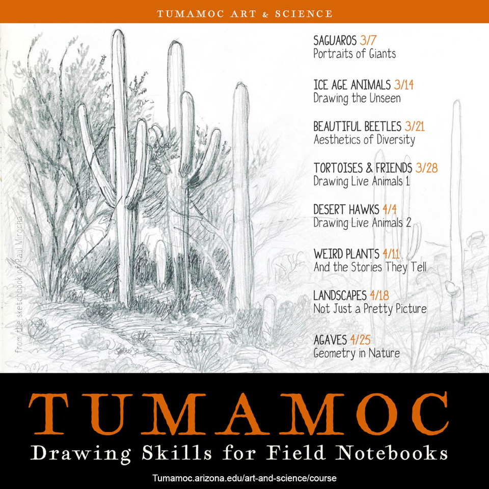 TUMAMOC: Drawing Skills for Field Notebooks