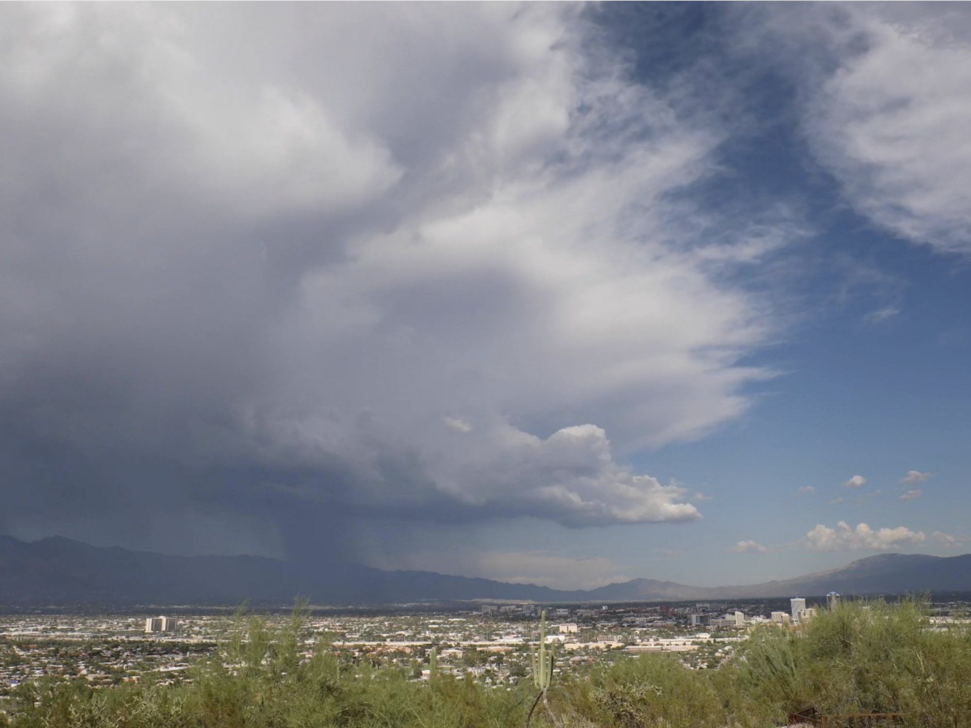 Tucson Catalinas storm from Tumamoc Hill by Nick Georgiou